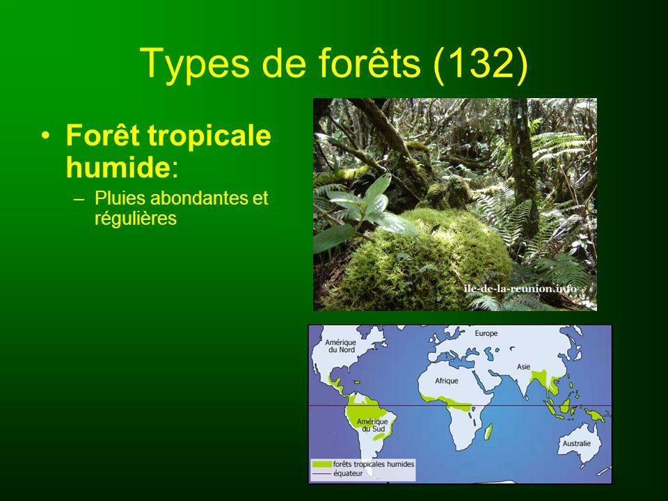 Types de forêts (132) Forêt tempérée : –Climat doux –Composée surtout de feuillus