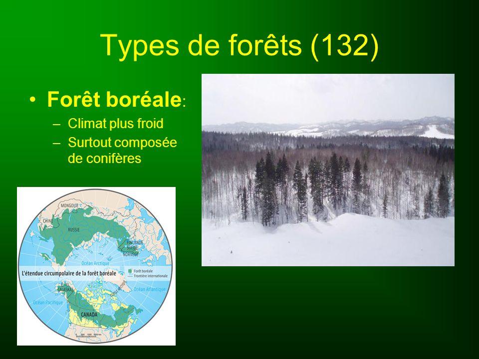 Types de forêts (132) Forêt boréale : –Climat plus froid –Surtout composée de conifères