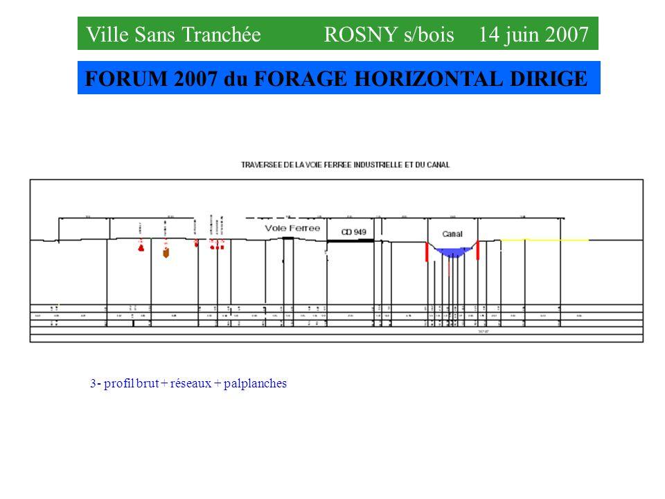 FORUM 2007 du FORAGE HORIZONTAL DIRIGE Ville Sans Tranchée ROSNY s/bois 14 juin 2007 3- profil brut + réseaux + palplanches
