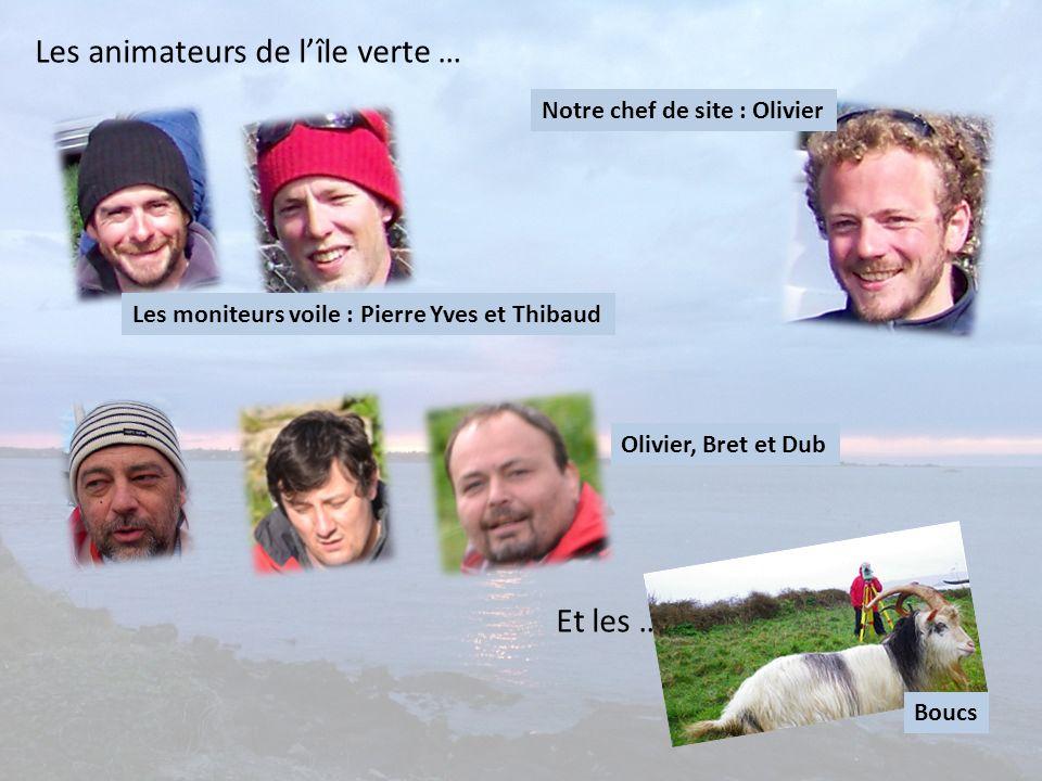 Les animateurs de lîle verte … Les moniteurs voile : Pierre Yves et Thibaud Notre chef de site : Olivier Olivier, Bret et Dub Et les … Boucs