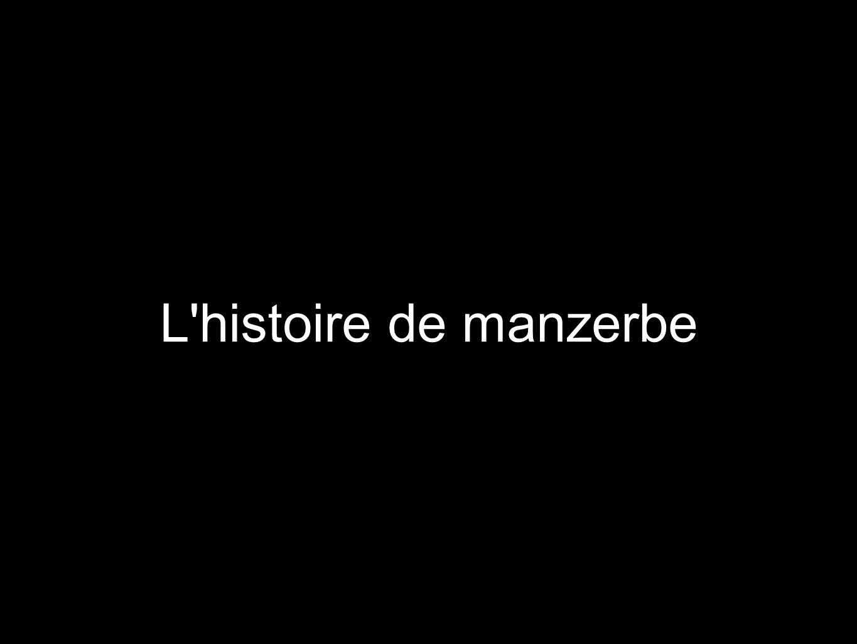 L'histoire de manzerbe