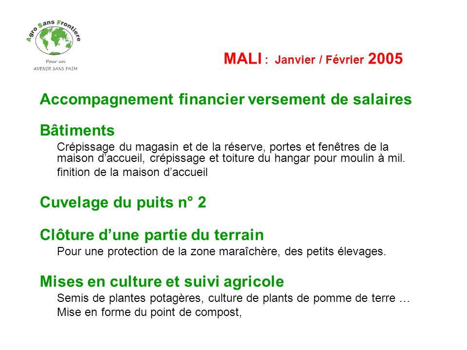 MALI – Novembre / Décembre 2005 Tourisme Solidaire (voir diaporama) Accueil de trois groupes pour : Visite du site de production maraîchère Association MOLIBIREMON « Travaillons Ensemble » Visite en Pays Dogon