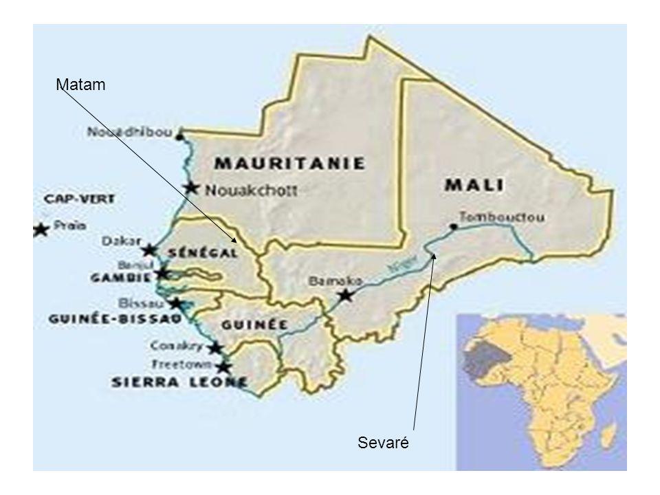 HAITI Les Jardins de Haïti Projet en attente… Reprise dactivité en fonction de la sécurité locale… Sans doute lors de la fin des élections et de la mise en place des organisations gouvernementales, territoriales, et locales.