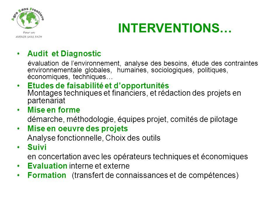 Audit et Diagnostic évaluation de lenvironnement, analyse des besoins, étude des contraintes environnementale globales, humaines, sociologiques, polit