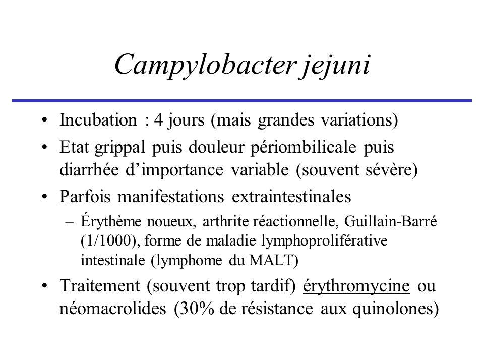 Campylobacter jejuni Incubation : 4 jours (mais grandes variations) Etat grippal puis douleur périombilicale puis diarrhée dimportance variable (souve