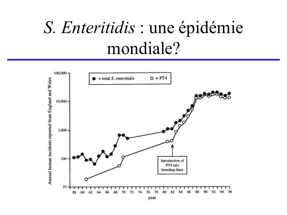 S. Enteritidis : une épidémie mondiale?