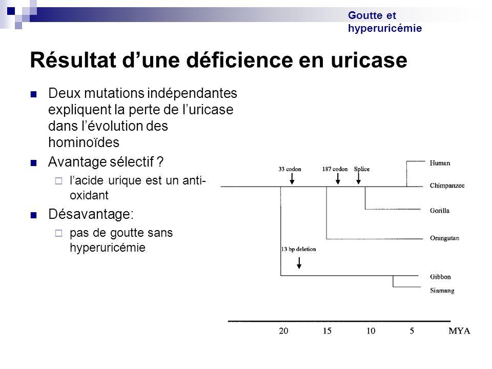 Goutte et hyperuricémie Résultat dune déficience en uricase Deux mutations indépendantes expliquent la perte de luricase dans lévolution des hominoïde