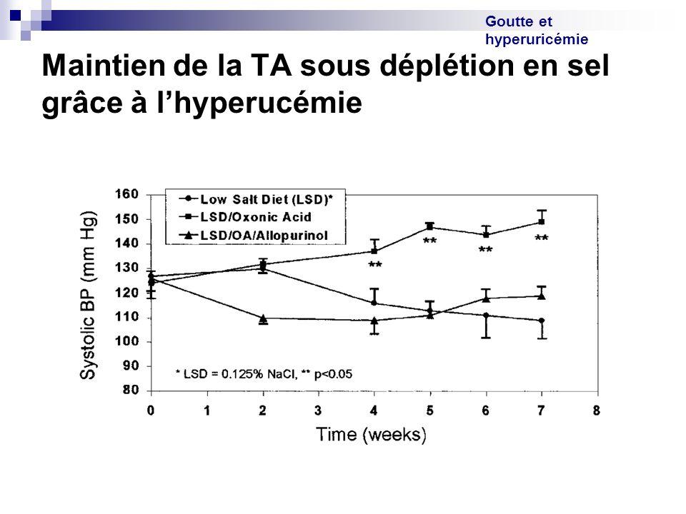 Goutte et hyperuricémie Maintien de la TA sous déplétion en sel grâce à lhyperucémie