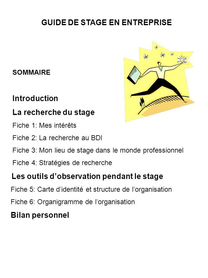 SOMMAIRE Introduction La recherche du stage Fiche 1: Mes intérêts Fiche 2: La recherche au BDI Fiche 3: Mon lieu de stage dans le monde professionnel