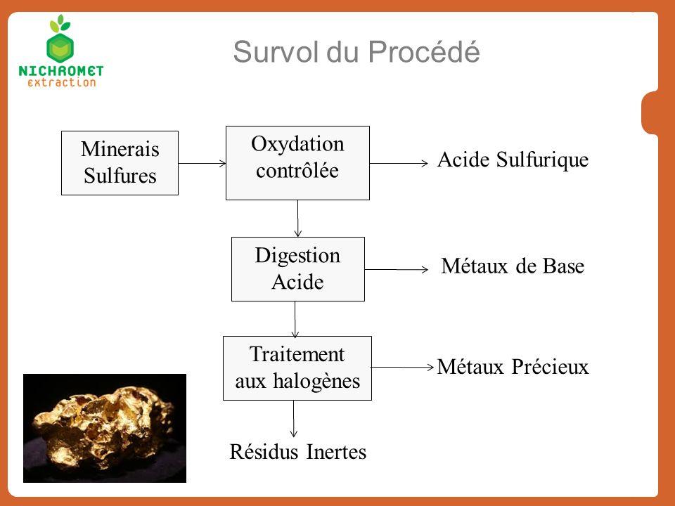 Survol du Procédé Minerais Sulfures Oxydation contrôlée Digestion Acide Métaux de Base Traitement aux halogènes Acide Sulfurique Métaux Précieux Résid