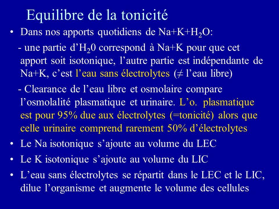 Equilibre de la tonicité Dans nos apports quotidiens de Na+K+H 2 O: - une partie dH 2 0 correspond à Na+K pour que cet apport soit isotonique, lautre