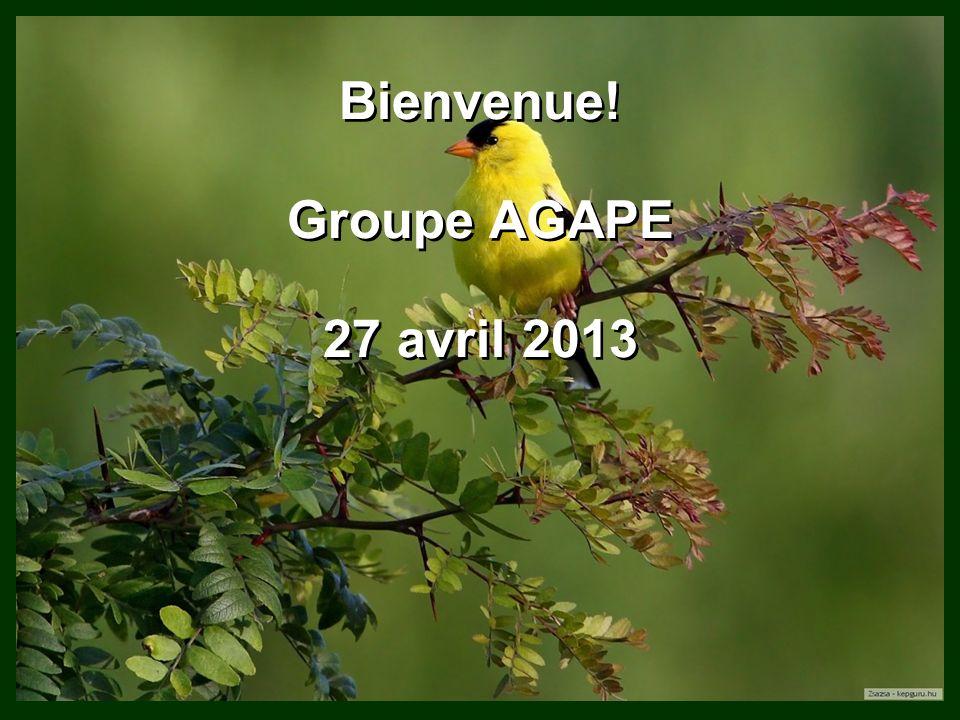 Bienvenue! Groupe AGAPE 27 avril 2013 Bienvenue! Groupe AGAPE 27 avril 2013