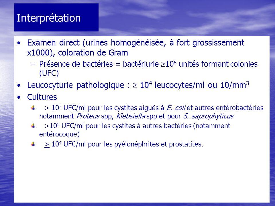 Interprétation Examen direct (urines homogénéisée, à fort grossissement x1000), coloration de Gram –Présence de bactéries = bactériurie 10 5 unités fo