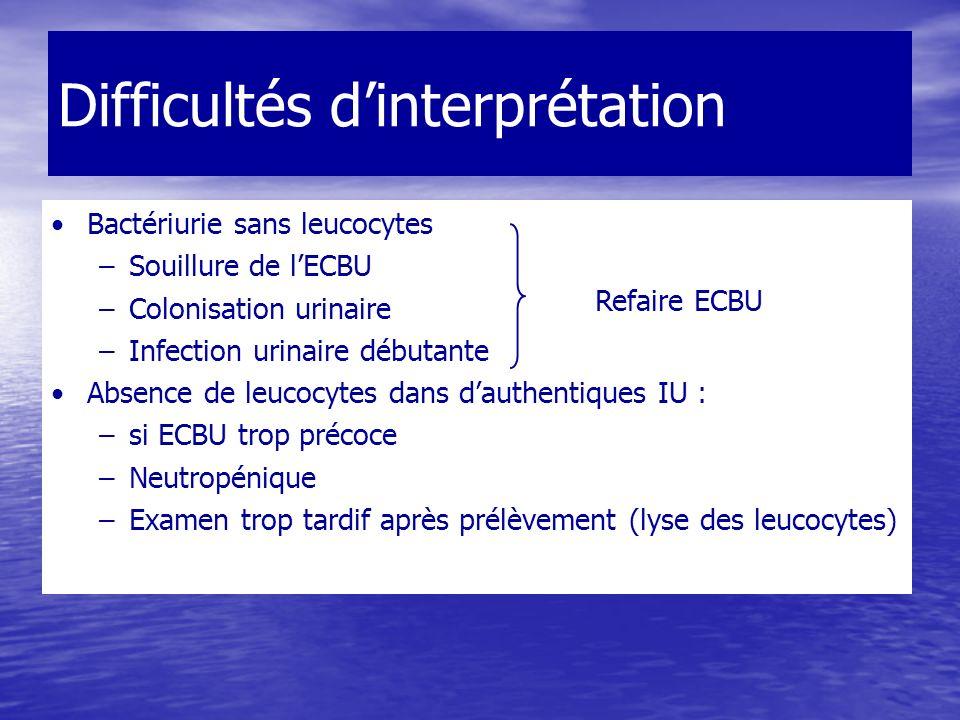 Difficultés dinterprétation Bactériurie sans leucocytes –Souillure de lECBU –Colonisation urinaire –Infection urinaire débutante Absence de leucocytes
