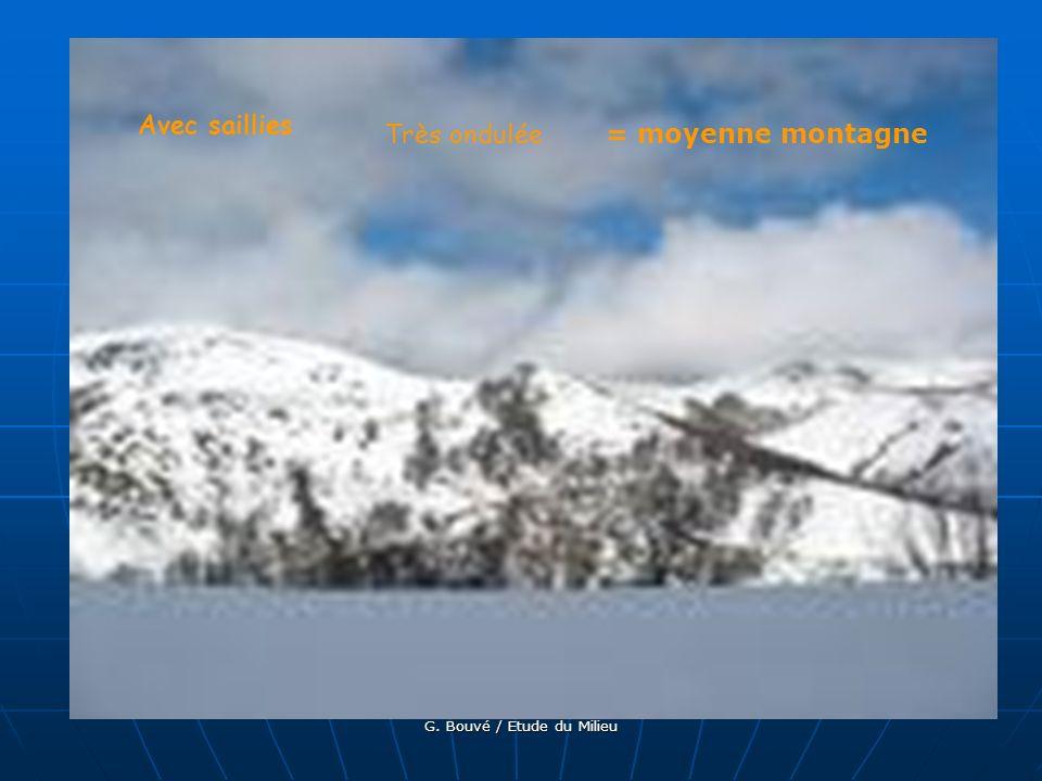 G. Bouvé / Etude du Milieu Sans saillie / Dominante / cours deau encaissé = plateau