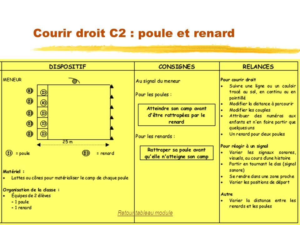 Courir droit C2 : poule et renard 25 Retour tableau module