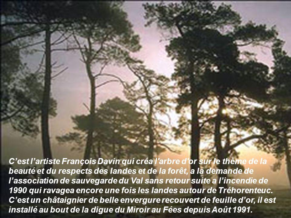 Cest lartiste François Davin qui créa l'arbre d'or sur le thème de la beauté et du respects des landes et de la forêt, a la demande de lassociation de