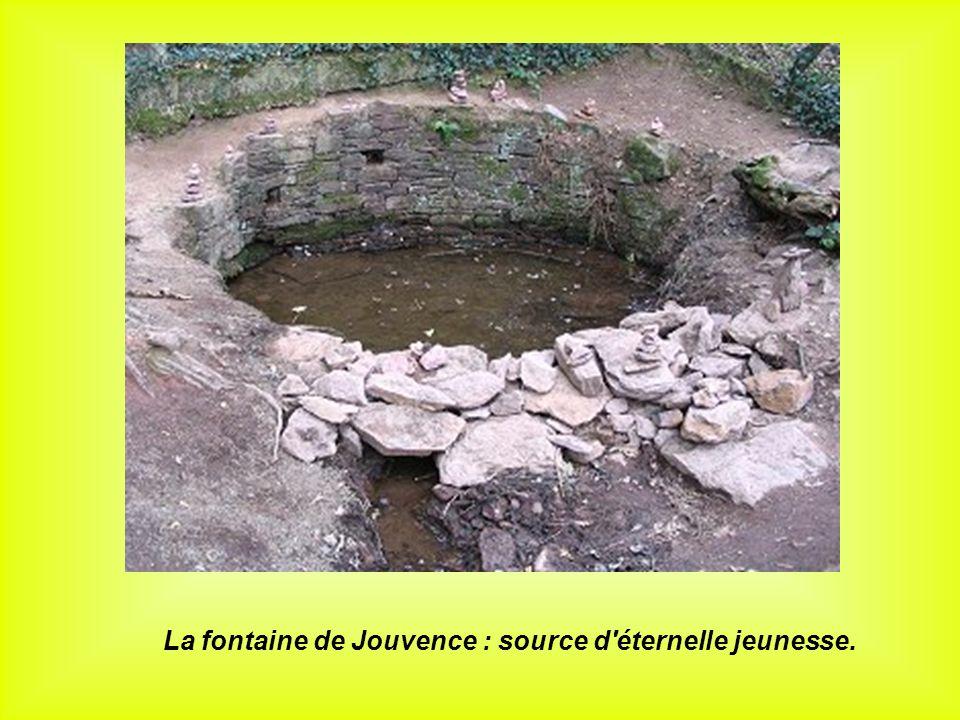 La fontaine de Jouvence : source d'éternelle jeunesse.
