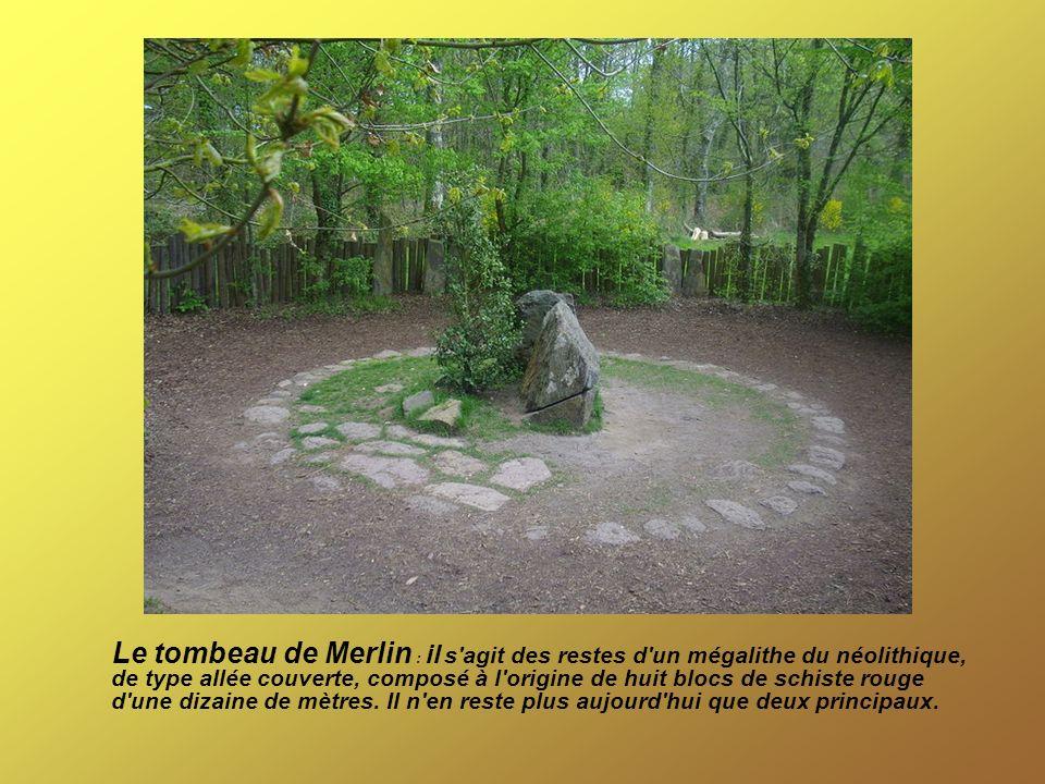 Le tombeau de Merlin : il s'agit des restes d'un mégalithe du néolithique, de type allée couverte, composé à l'origine de huit blocs de schiste rouge