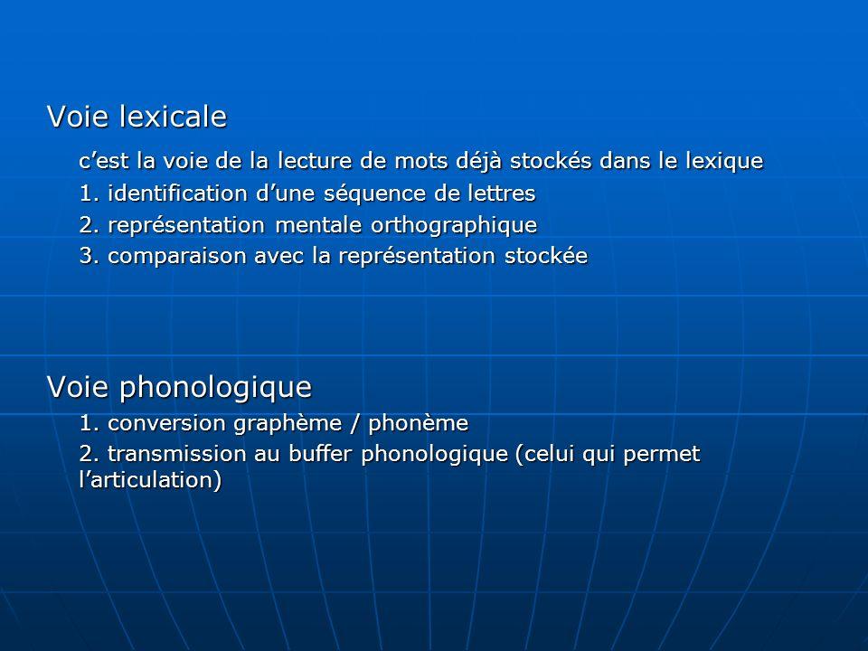 Voie lexicale cest la voie de la lecture de mots déjà stockés dans le lexique 1. identification dune séquence de lettres 2. représentation mentale ort