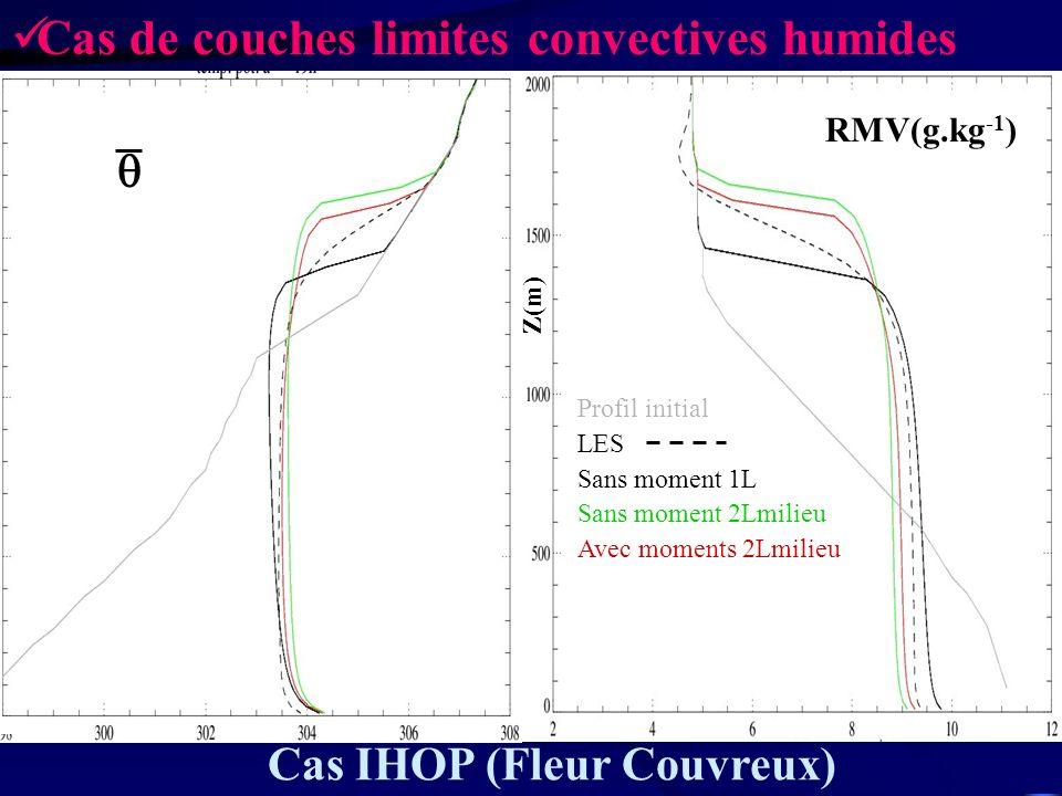 Profil initial LES Sans moment 1L Sans moment 2Lmilieu Avec moments 2Lmilieu Z(m) RMV(g.kg -1 ) Cas IHOP (Fleur Couvreux) Cas de couches limites conve