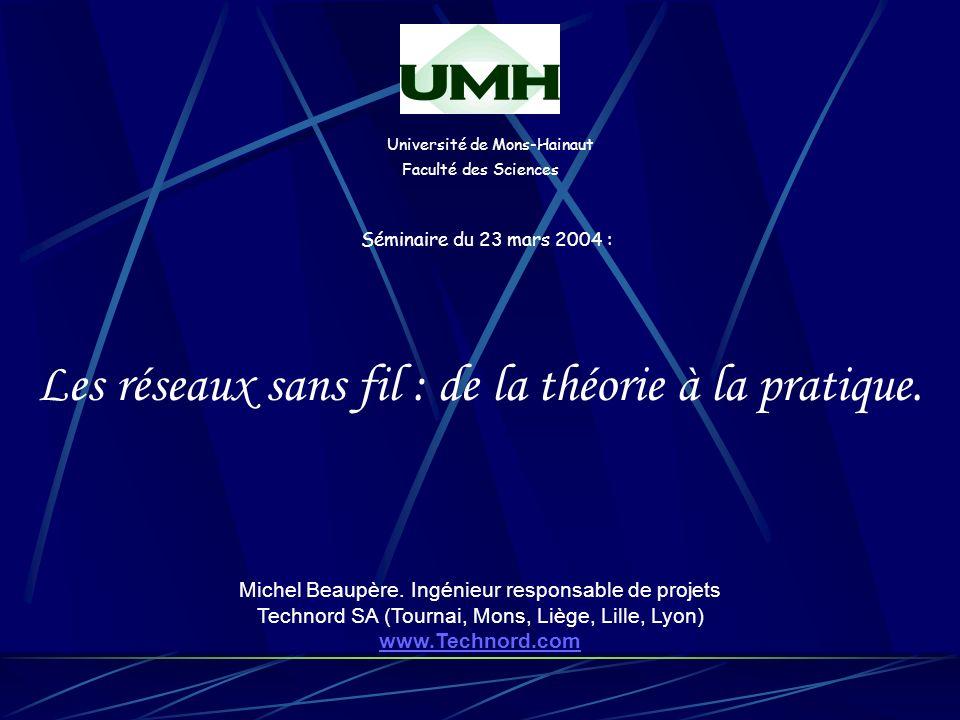 Université de Mons-Hainaut Faculté des Sciences Séminaire du 23 mars 2004 : Les réseaux sans fil : de la théorie à la pratique.