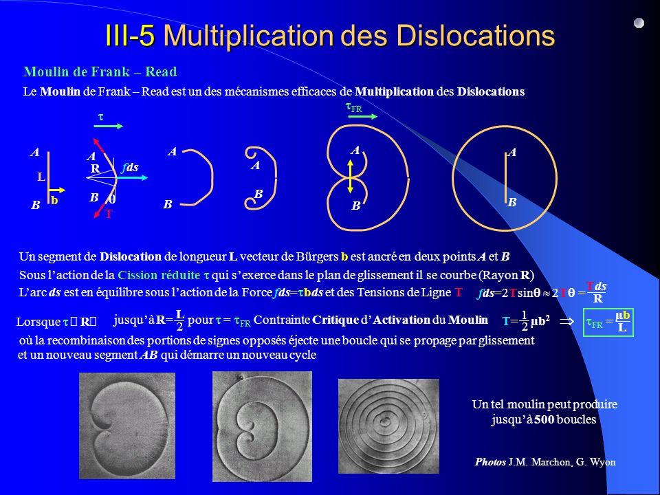 III-5 Multiplication des Dislocations A B Le Moulin de Frank – Read est un des mécanismes efficaces de Multiplication des Dislocations Moulin de Frank – Read Un segment de Dislocation de longueur L vecteur de Bürgers b est ancré en deux points A et B A B L b B R Sous laction de la Cission réduite qui sexerce dans le plan de glissement il se courbe (Rayon R) A fds T Larc ds est en équilibre sous laction de la Force fds= bds et des Tensions de Ligne T fds=2Tsin 2T = Tds R A B FR jusquà R= pour = FR Contrainte Critique dActivation du Moulin L 2 T= µb 2 1 2 FR = µbµb L où la recombinaison des portions de signes opposés éjecte une boucle qui se propage par glissement A B et un nouveau segment AB Un tel moulin peut produire jusquà 500 boucles Photos J.M.