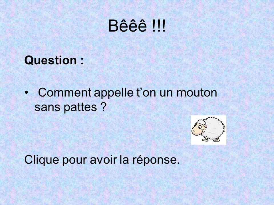 Bêêê !!! Question : Comment appelle ton un mouton sans pattes ? Clique pour avoir la réponse.