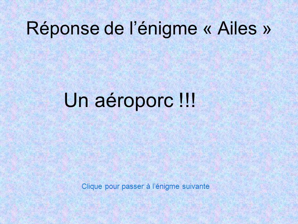 Réponse de lénigme « Ailes » Un aéroporc !!! Clique pour passer à lénigme suivante