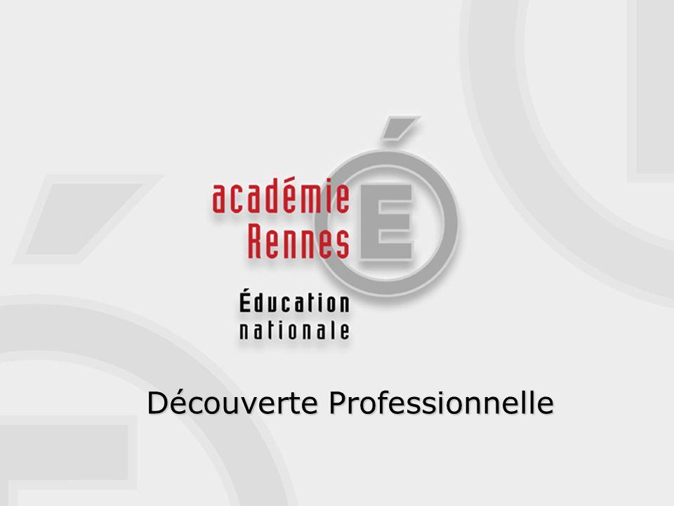 DECOUVERTE PROFESSIONNELLE Une option 3 h en collège 1 module 6 h en LP