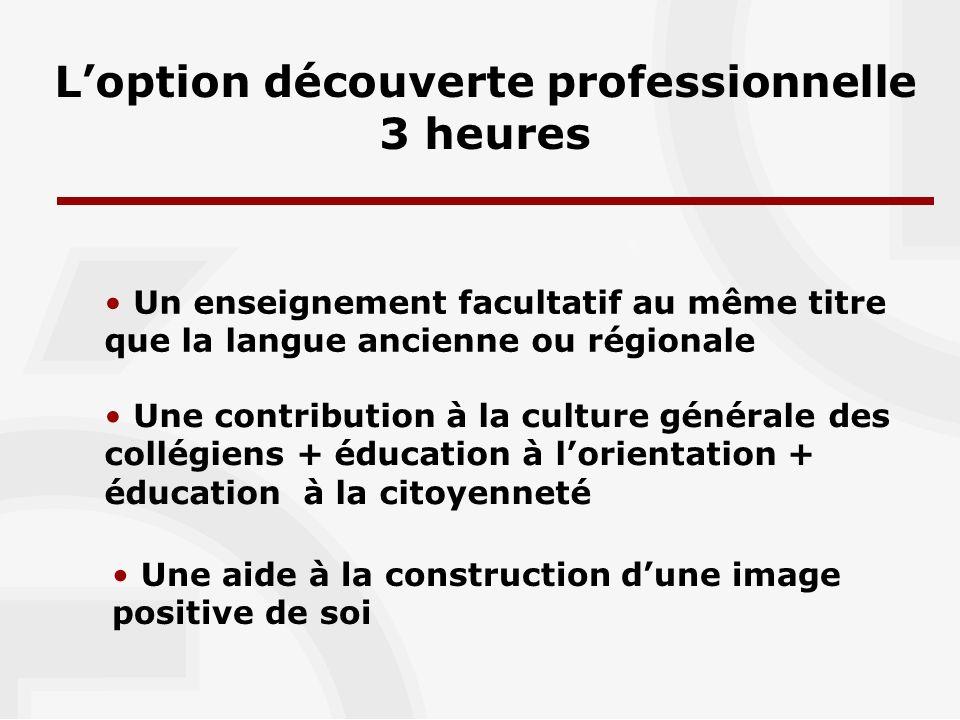Objectifs pédagogiques Progression annuelle 3 axes de découverte - les métiers et les activités professionnelles - les organisations - les lieux et les modalités de formation