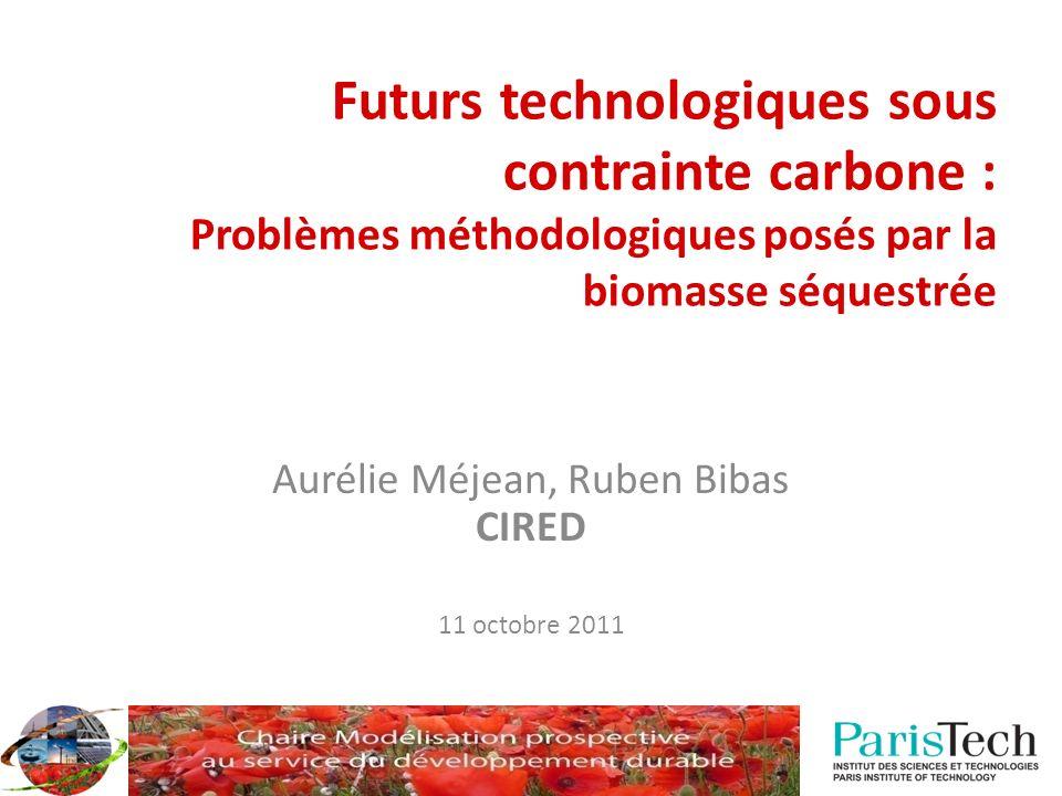Futurs technologiques sous contrainte carbone : Problèmes méthodologiques posés par la biomasse séquestrée Aurélie Méjean, Ruben Bibas CIRED 11 octobre 2011