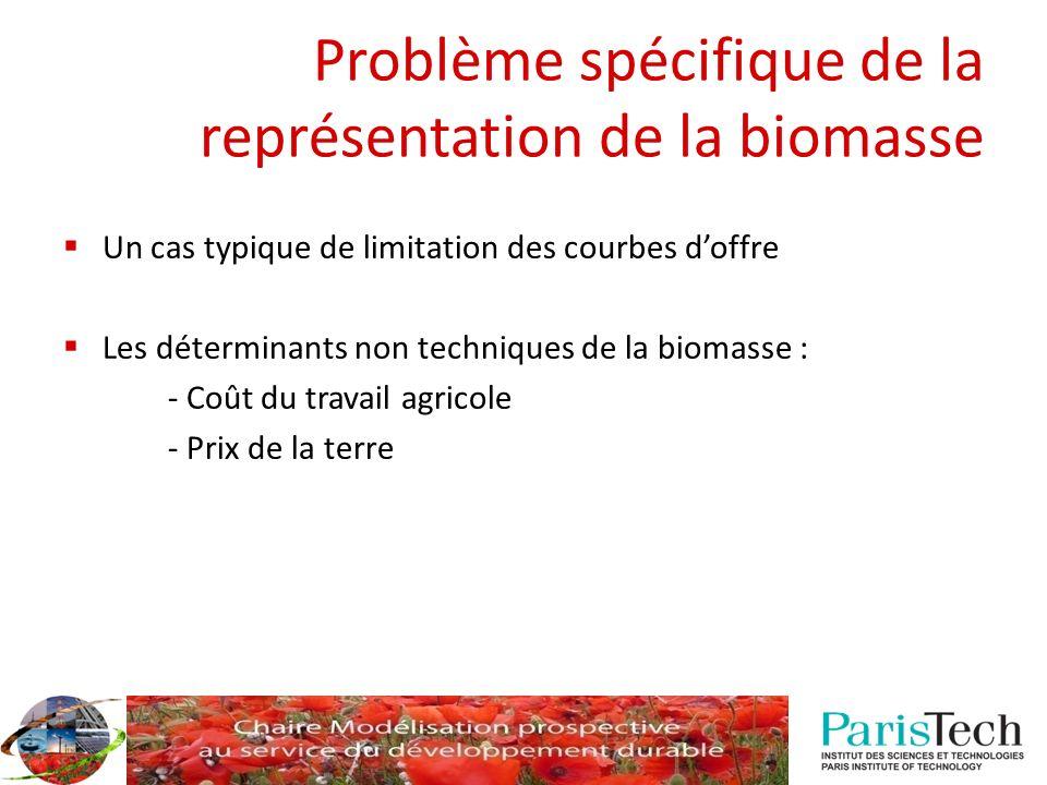 Problème spécifique de la représentation de la biomasse Un cas typique de limitation des courbes doffre Les déterminants non techniques de la biomasse : - Coût du travail agricole - Prix de la terre