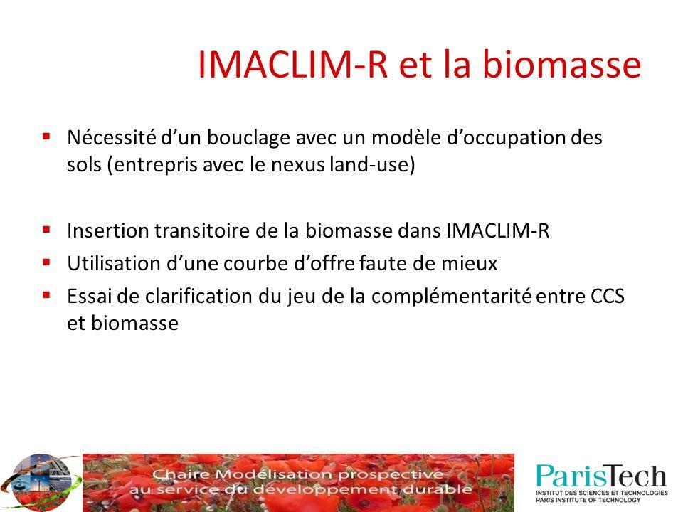 IMACLIM-R et la biomasse Nécessité dun bouclage avec un modèle doccupation des sols (entrepris avec le nexus land-use) Insertion transitoire de la bio