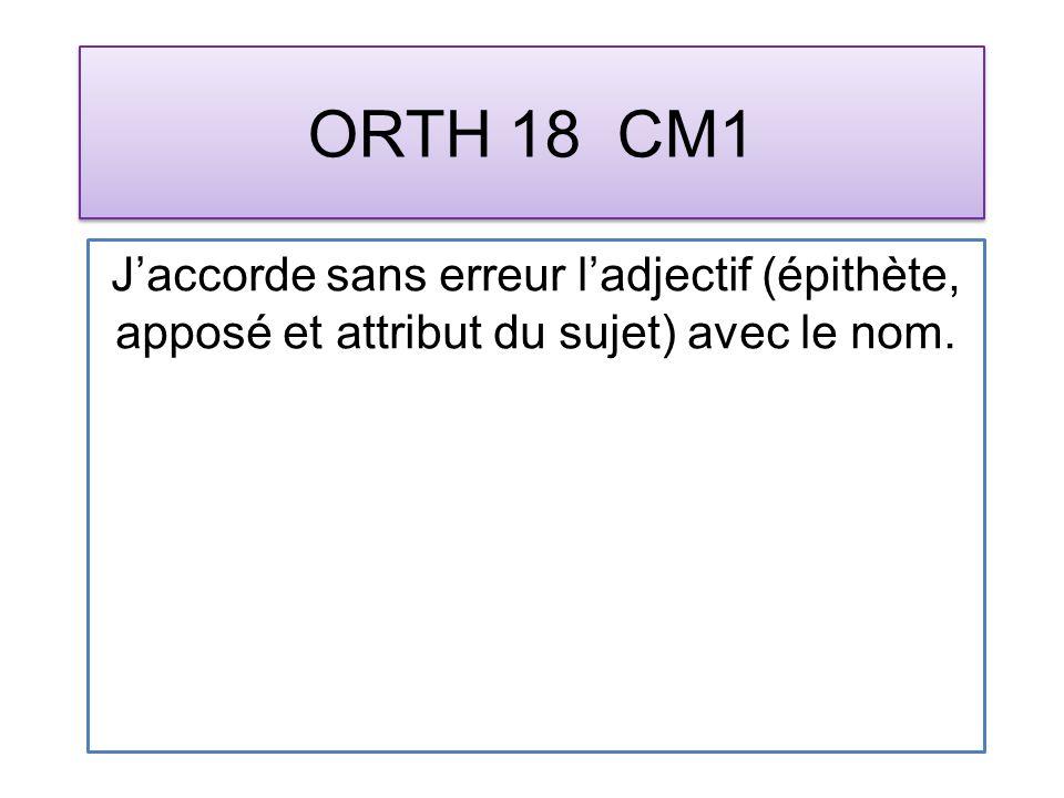 ORTH 18 CM1 Jaccorde sans erreur ladjectif (épithète, apposé et attribut du sujet) avec le nom.