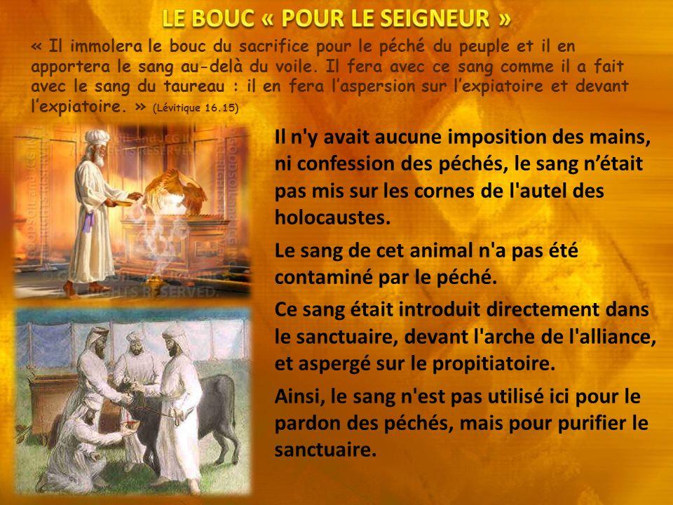 « Il immolera le bouc du sacrifice pour le péché du peuple et il en apportera le sang au-delà du voile. Il fera avec ce sang comme il a fait avec le s