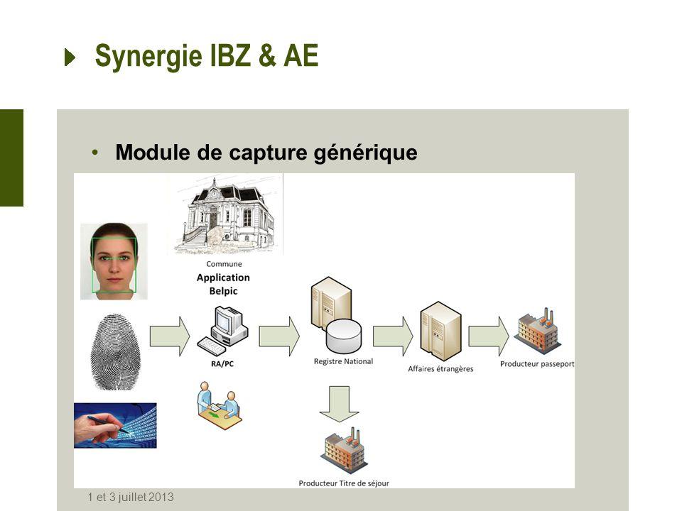 Synergie IBZ & AE Module de capture générique 1 et 3 juillet 2013
