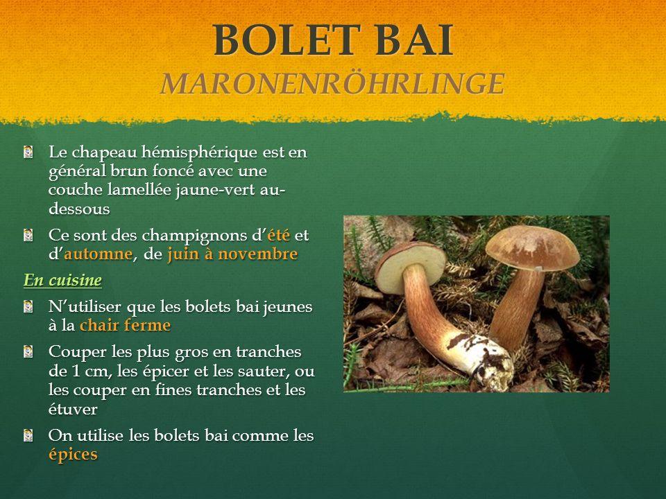 BOLET BAI MARONENRÖHRLINGE Le chapeau hémisphérique est en général brun foncé avec une couche lamellée jaune-vert au- dessous Ce sont des champignons