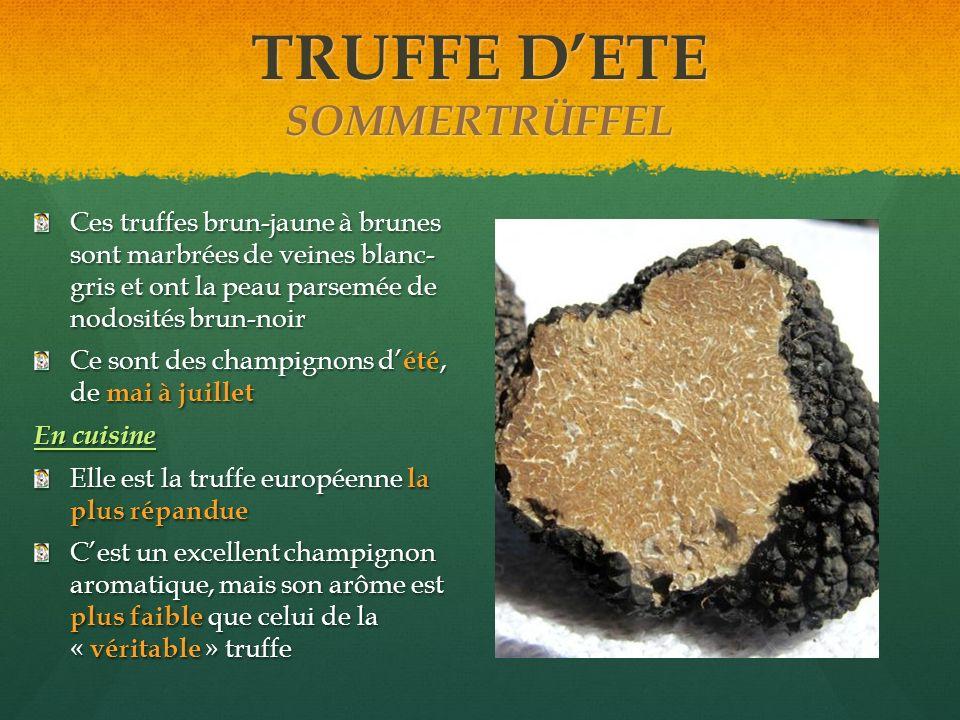 TRUFFE DETE SOMMERTRÜFFEL Ces truffes brun-jaune à brunes sont marbrées de veines blanc- gris et ont la peau parsemée de nodosités brun-noir Ce sont d