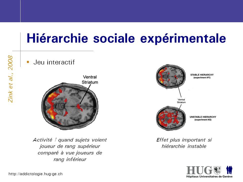 http://addictologie.hug-ge.ch Hiérarchie sociale expérimentale Jeu interactif Zink et al., 2008 Activité quand sujets voient joueur de rang supérieur