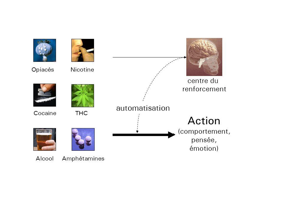 http://addictologie.hug-ge.ch Schémas composés dans WoW Stimulus indiquant quel schéma est actif P.ex.