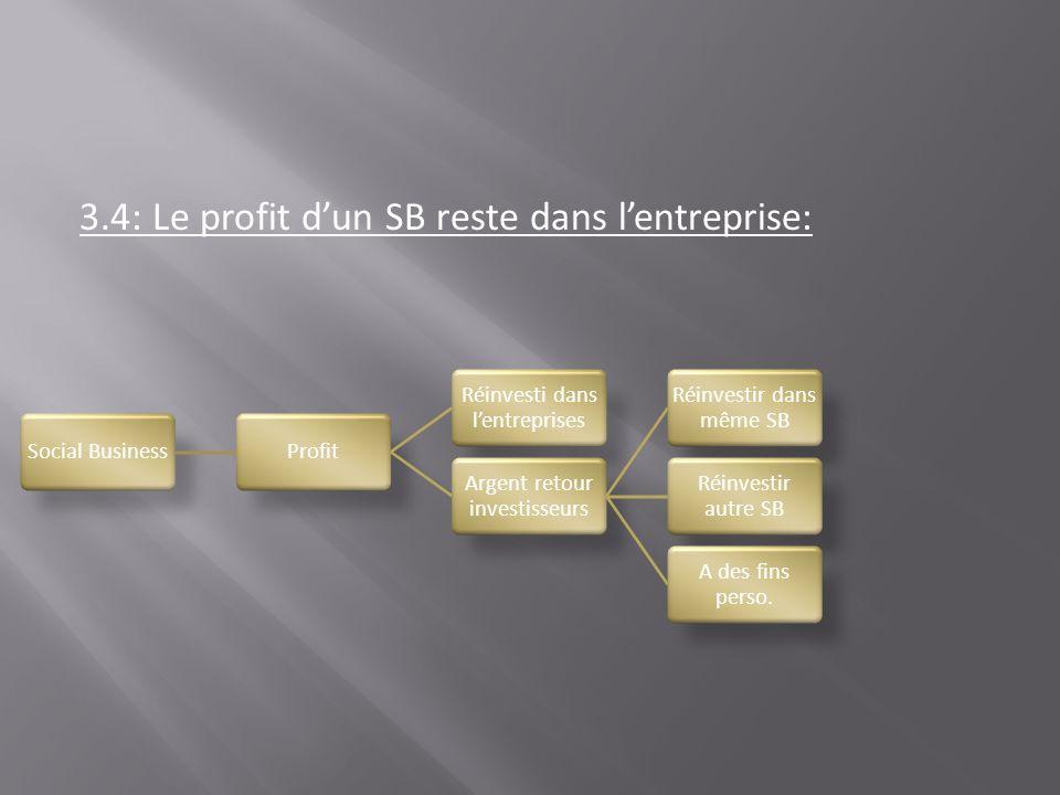 3.4: Le profit dun SB reste dans lentreprise: Social BusinessProfit Réinvesti dans lentreprises Argent retour investisseurs Réinvestir dans même SB Ré