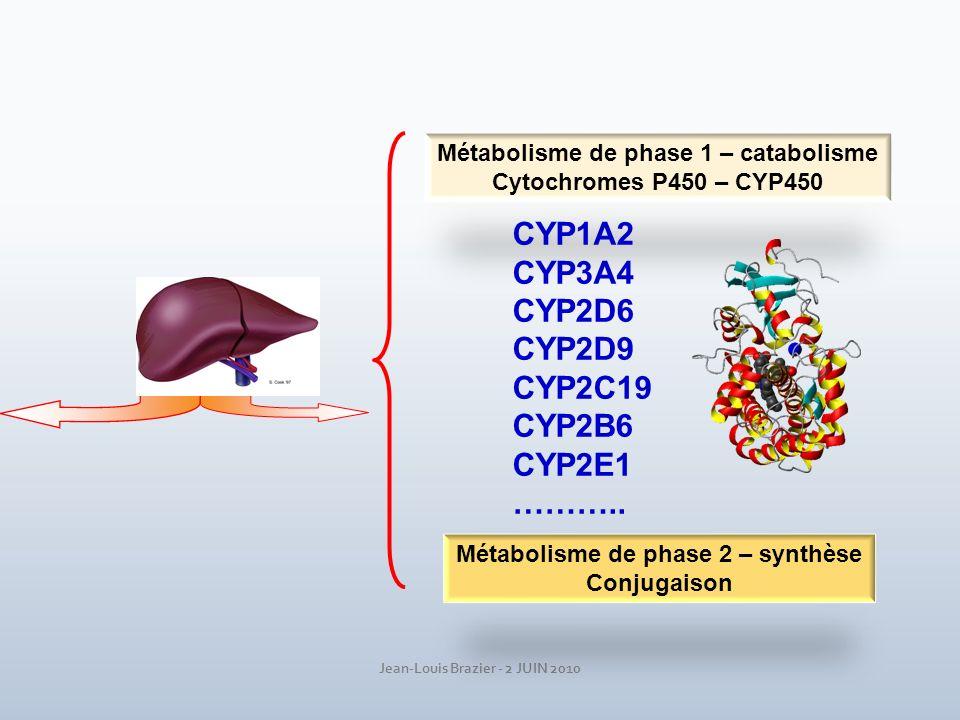Jean-Louis Brazier - 2 JUIN 2010 Métabolisme de phase 1 – catabolisme Cytochromes P450 – CYP450 Métabolisme de phase 2 – synthèse Conjugaison CYP1A2 C