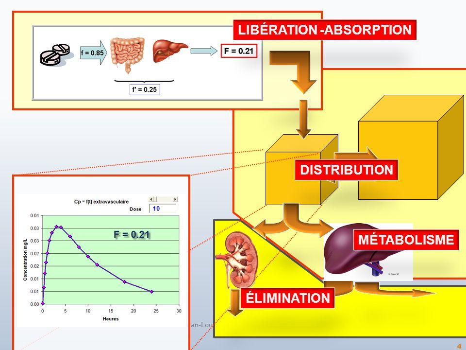 4 LIBÉRATION -ABSORPTION DISTRIBUTION MÉTABOLISME ÉLIMINATION