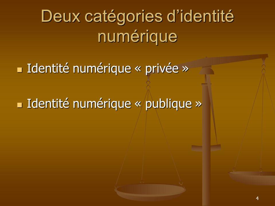 Deux catégories didentité numérique Identité numérique « privée » Identité numérique « privée » Identité numérique « publique » Identité numérique « p