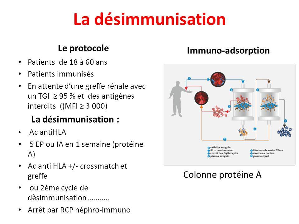 La désimmunisation Le protocole Immuno-adsorption Colonne protéine A Patients de 18 à 60 ans Patients immunisés En attente dune greffe rénale avec un