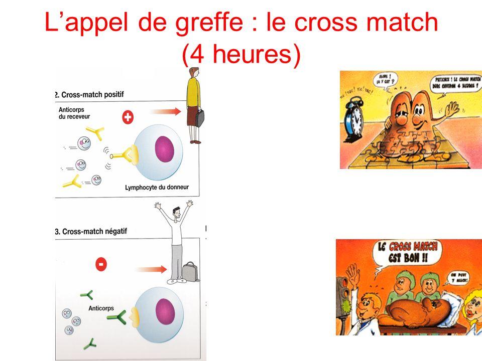 Lappel de greffe : le cross match (4 heures)