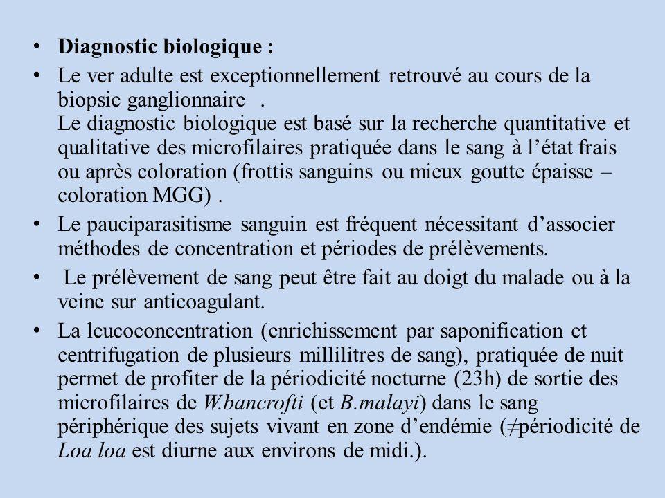 Diagnostic biologique : Le ver adulte est exceptionnellement retrouvé au cours de la biopsie ganglionnaire.