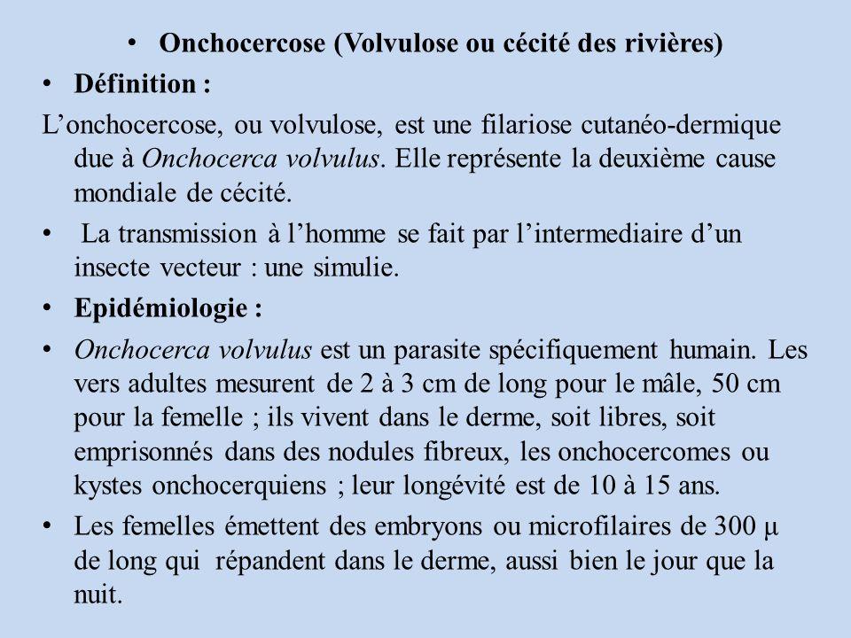 Onchocercose (Volvulose ou cécité des rivières) Définition : Lonchocercose, ou volvulose, est une filariose cutanéo-dermique due à Onchocerca volvulus.