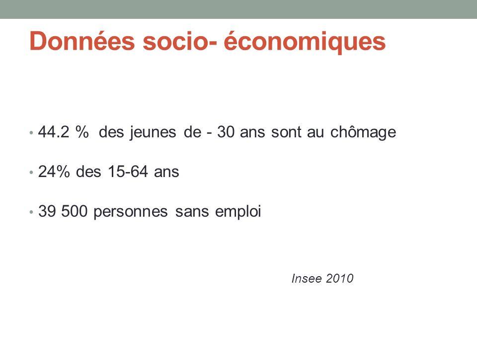 Données socio- économiques 44.2 % des jeunes de - 30 ans sont au chômage 24% des 15-64 ans 39 500 personnes sans emploi Insee 2010